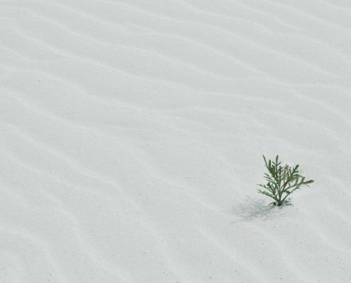 Corona-Wüste